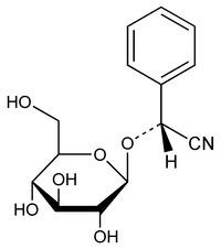Mandelonitrile Glucoside