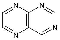 Pteridine
