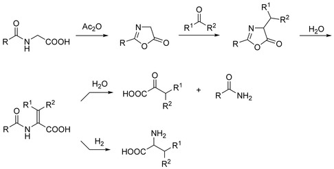 Erlenmeyer-Plöchl Azlactone and Amino Acid Synthesis