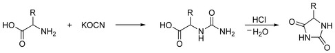 Urech Hydantoin Synthesis